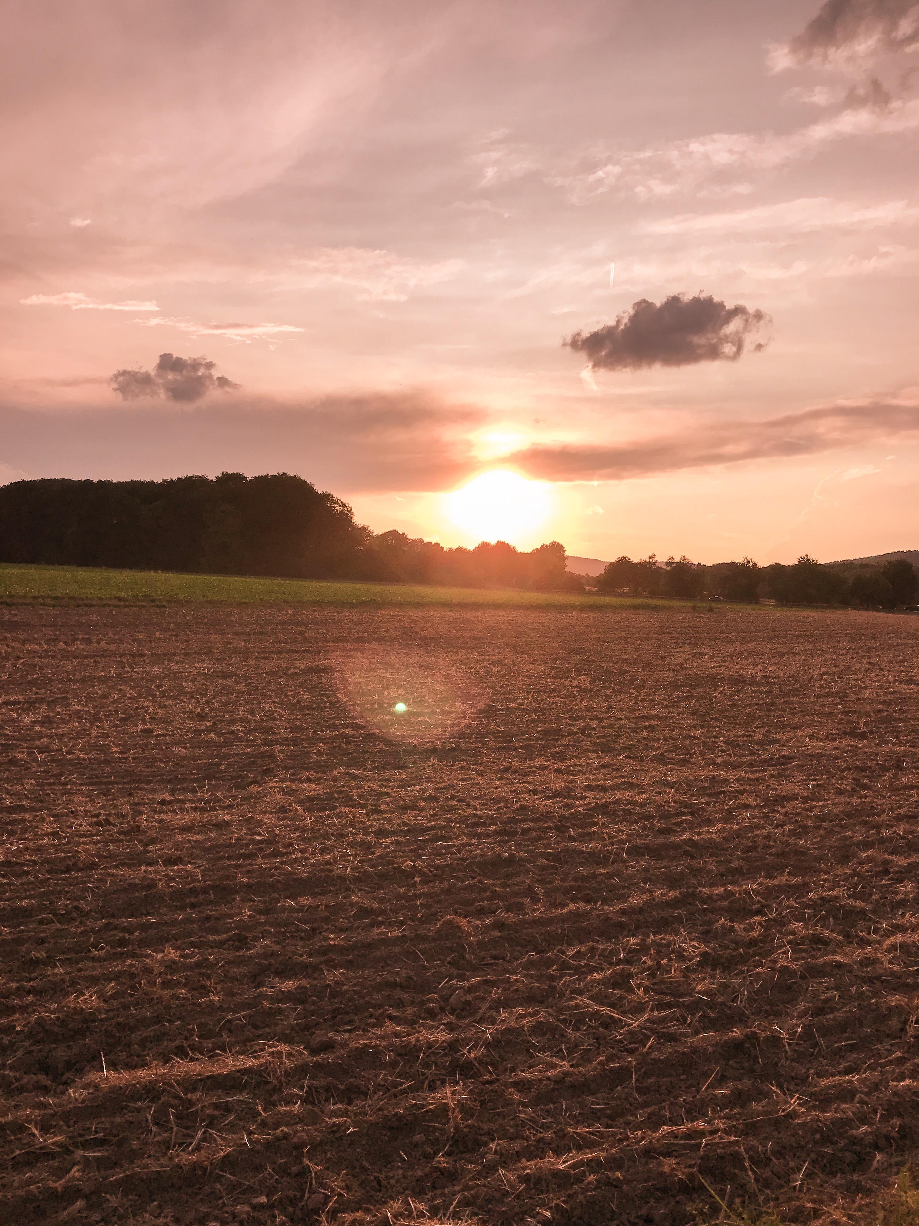 Leselaunen | Kommt der Herbst jetzt schon?