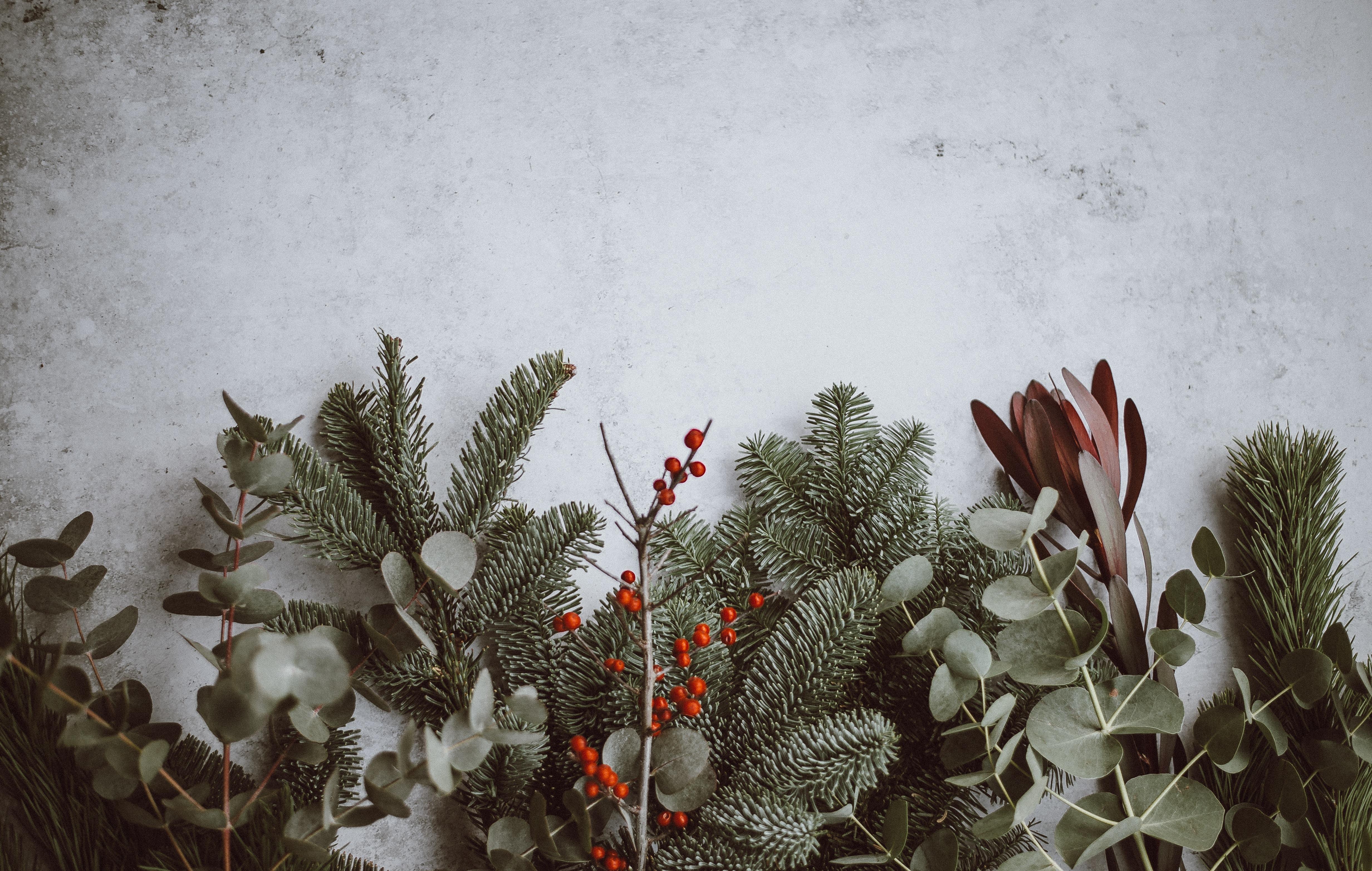 Leselaunen |Kreativer Schub und DIY Geschenke