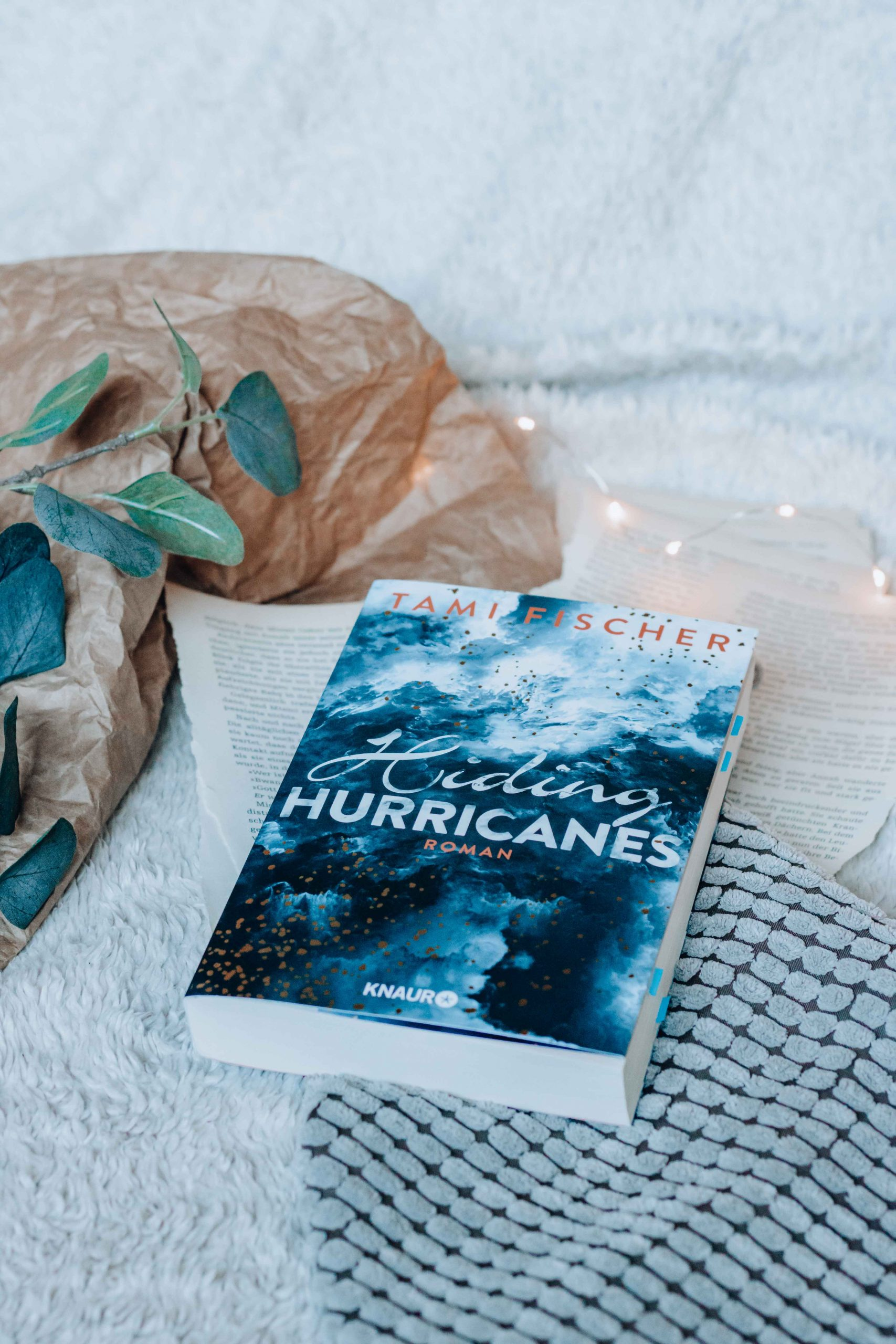 Hiding Hurricanes – Fletcher University | Tami Fischer